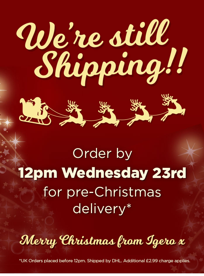 Massive Christmas Sale